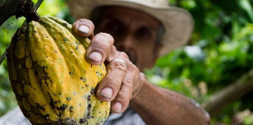 Colpensiones resguarda el trabajo de millones de colombianos.