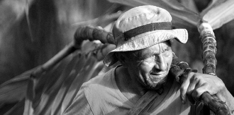Este ente ayuda a los colombianos a cumplir sus sueños de una jubilación dorada.